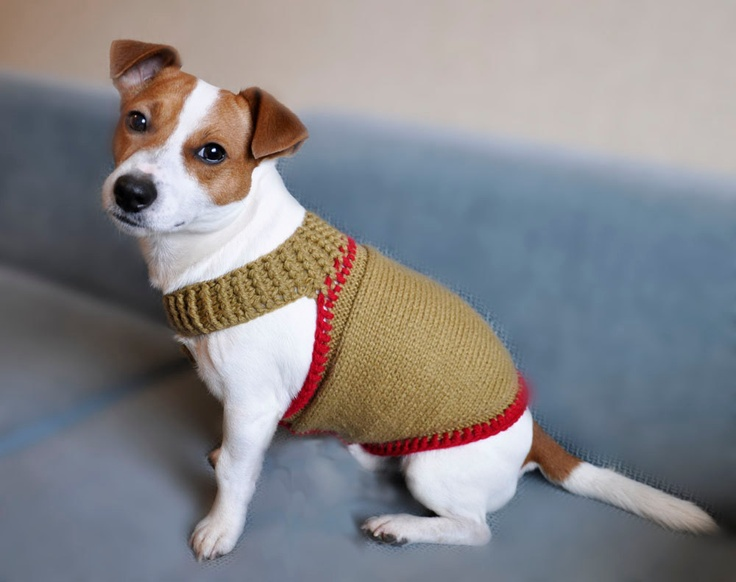 Knitted Mustard and Red Dog Sweater $35.00, via Etsy.