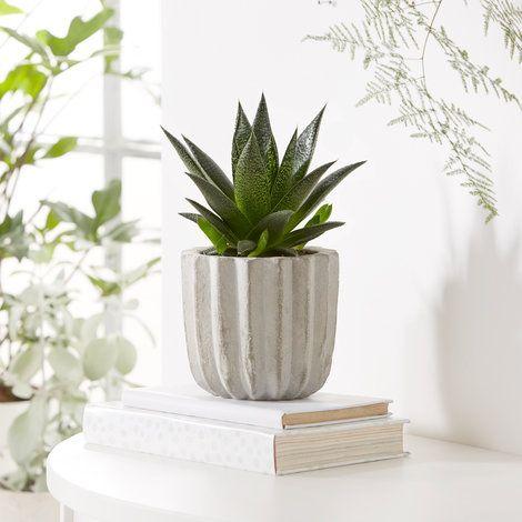 Anana Designer Sitzmobel Weicher Stoff Aqua Creations. 9 best ...