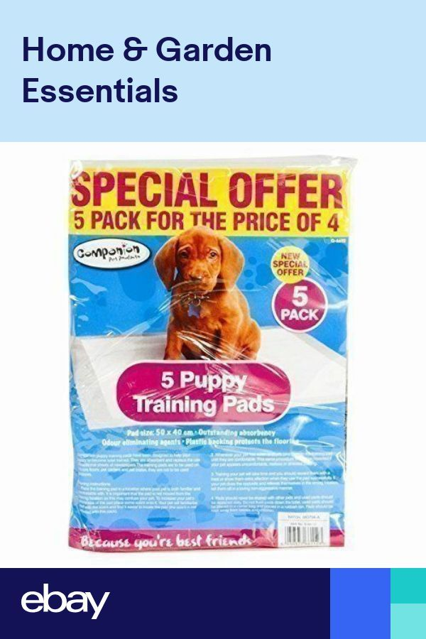 5 Medium 50 X 40 Cm Dog Puppy Trainer Training Super Absorbent Pads Sheets Our Training Is Fun For You And Y Puppy Pads Training Puppy Training Puppy Trainer