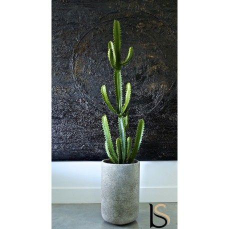 Cactus Euphorbe artificiel