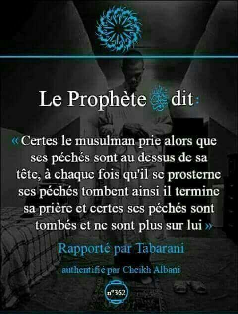 Rapporté par Tabarani et authentifié par sheikh Albani