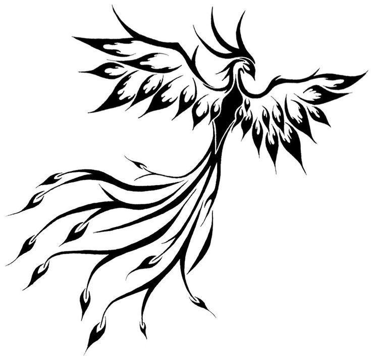 phoenix tattoo on shoulder blade or back images - Google Search