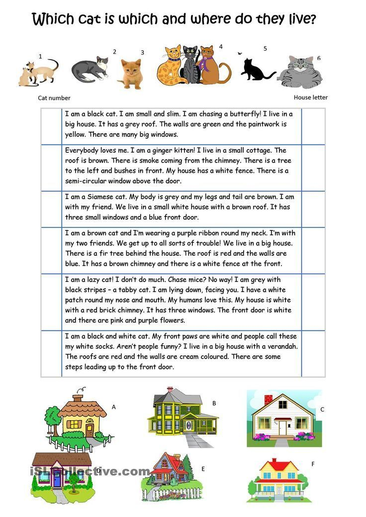 Describe The Cats And Their Houses Apprendre L Anglais Anglais Cm2 La Famille En Anglais