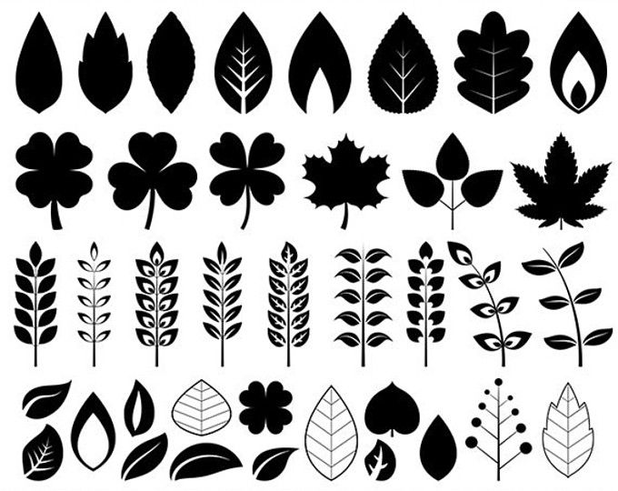 Leaves Clipart Watercolor Leaves Clip Art Autumn Leaves Etsy Leaf Clipart Free Clip Art Clip Art