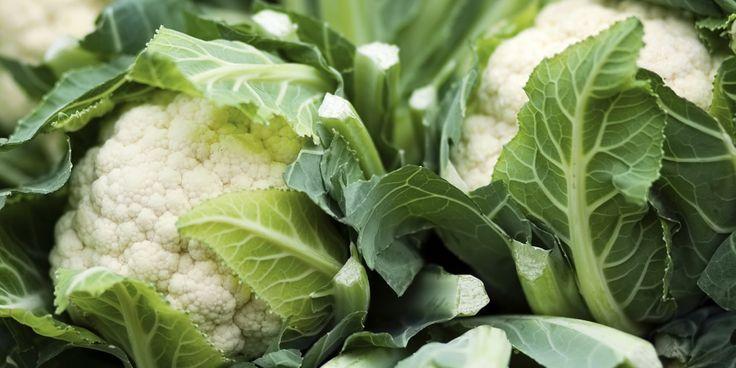 Kool is gezond, slank, lekker en ook nog eens goed voor het milieu.Vier redenenwaarom we zo dol zijn op Hollandse kool. Koolsoorten zoals rode kool, boerenkool en broccoli zijn herfst-en wintergroentes bij uitstek. En de meeste soorten worden nog op Nederlandse bodem gekweekt ook. Lekker vers dus, en goed voor onze boeren! Rijk aan foliumzuur…