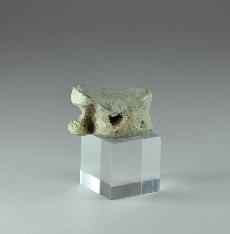 Roman lead astragalus, 1st-4th century A.D. Roman lead astragalus with hole in center. Private collection