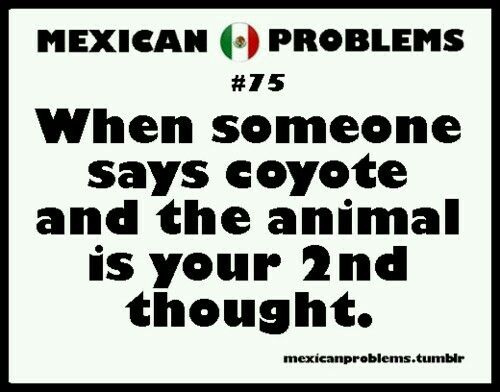 Mexican Problems Facebook 28 best images ...