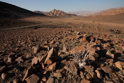 Richtersveld, South Africa's eighth World Heritage Site.