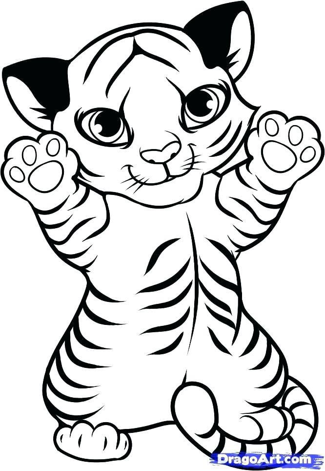 Tiger And Cub Coloring Pages 5 By Sabrina In 2019 Rhpinterest: Tiger Coloring Pages Easy At Baymontmadison.com