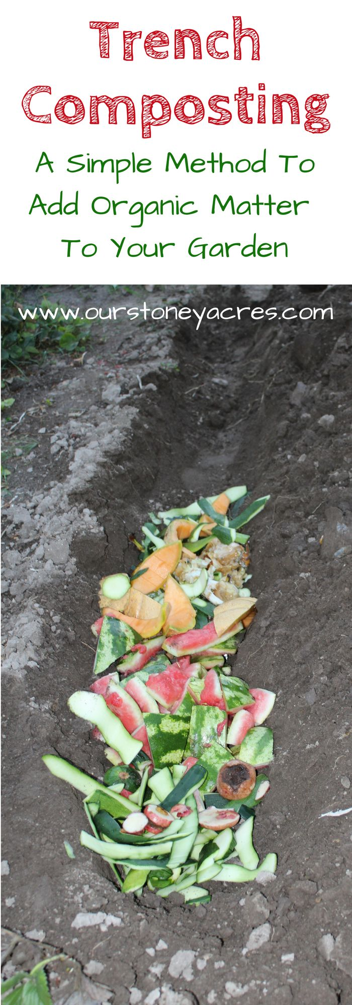 #2 -Trench Composting - Trench composting fits perfectly into my crazy gardening life. It's much simpler than trying to constantly have a pile of cooking compost.  This method makes composting easy and adds rich organic compost to your garden.  It works especially well for fall composting!