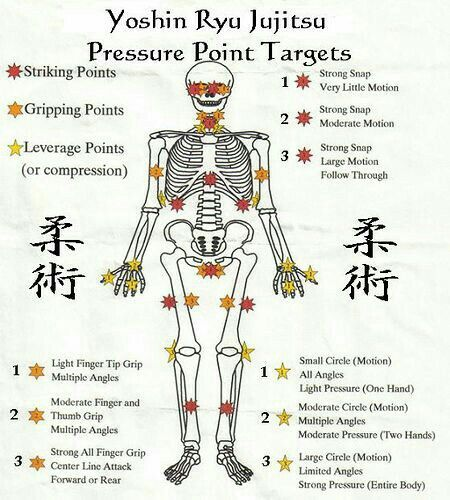 Yoshin Riu Jiu-jitsu. The pressure points.