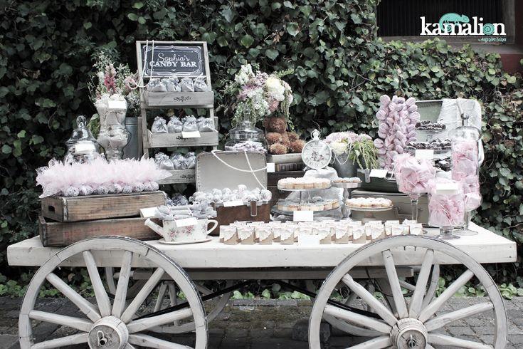 Vintage Decoracion Fiesta ~   Wedding  Boda  Rosa & Gris  Pink & Gray  Vintage  Rustic Decor