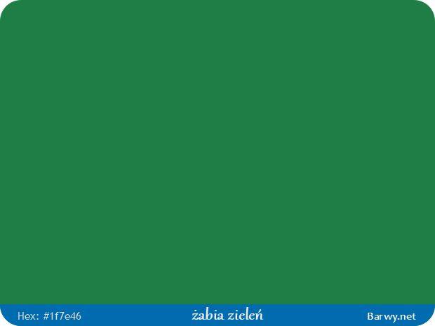 Kolor RGB HEX 1F7E46 - żabia zieleń - Froschgrün  - Barwy.net