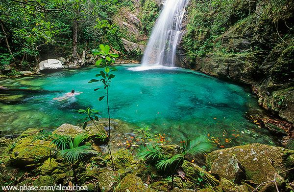Cachoeira de Santa Bárbara, Cavalcante, Chapada dos Veadeiros, GO by Alex Uchoa