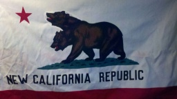 New California Republic Flag in Paint Me A Perfect World Productions $60