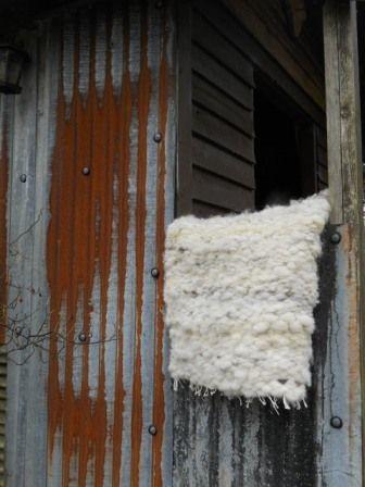 Welsh Jacob Wool Rug £78.00