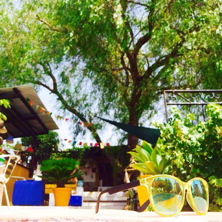 De grote valse peperboom in de tuin. In de zomer een hele fijne parasol!