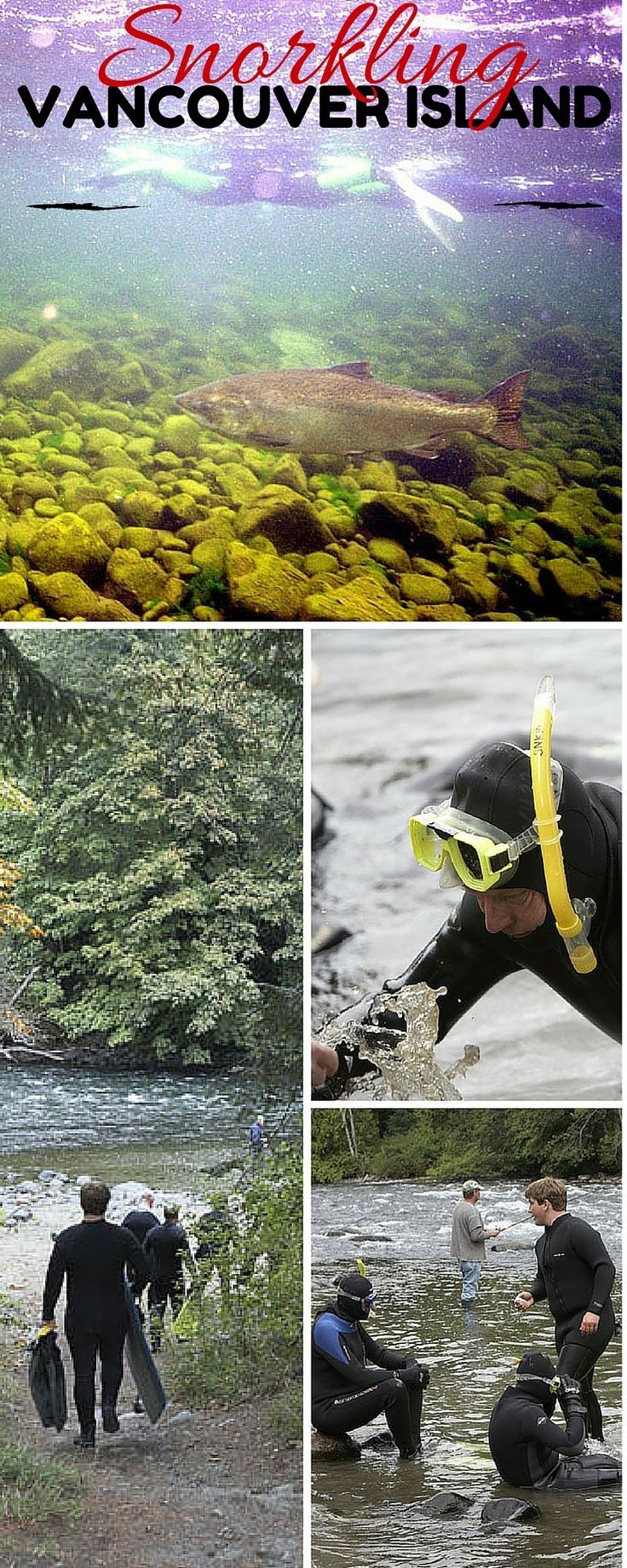 Campbell River is a salmon spawning stream that flows from Vancouver  Island's rugged interior