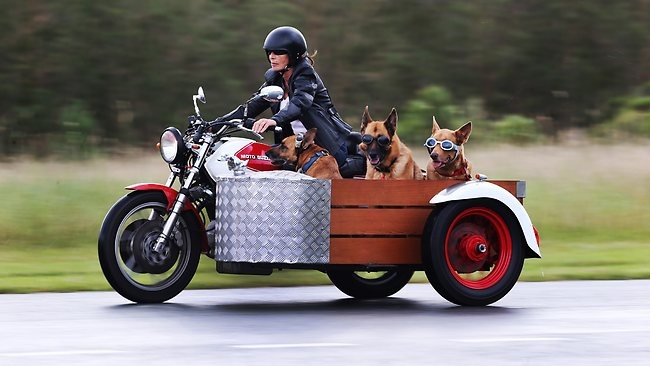 17+ best images about Sidecar on Pinterest | Bmw ...