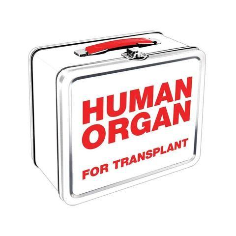 Human Organ Metal Lunch Box