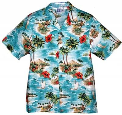 Love Hawaiian print shirts.
