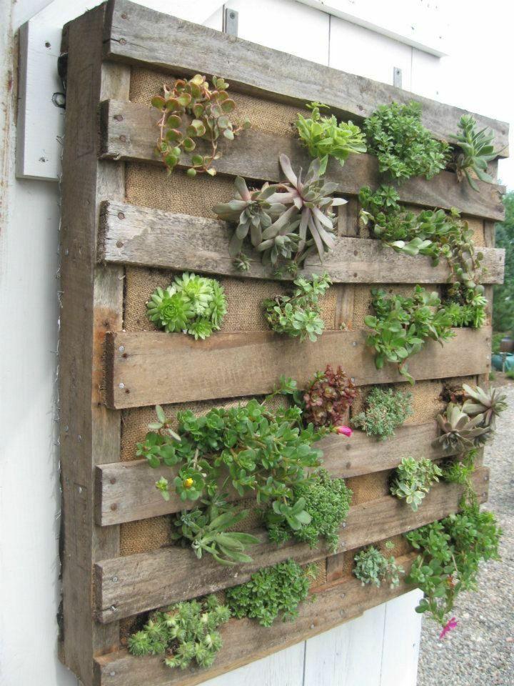 Diy Para Garten Hochbeet Ideas Creative Vertikaler Garten Diy Palettengarten Vertikale Sukkulenten Garten