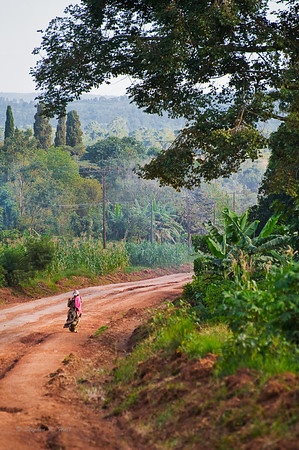 Wonderful Uganda http://www.travelandtransitions.com/destinations/destination-advice/africa/