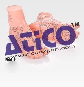 Atico is providing Biology Lab Equipment Manufacturers, Math's Lab Instruments and Laboratory Microscope Parts etc. Grab wide range of same kind of products like Microscope Led Lamp, Laboratory Metallurgical Microscope, Count Piece with Two Color and many more. Follow: https://www.aticoexport.com/product_category/microscopes/