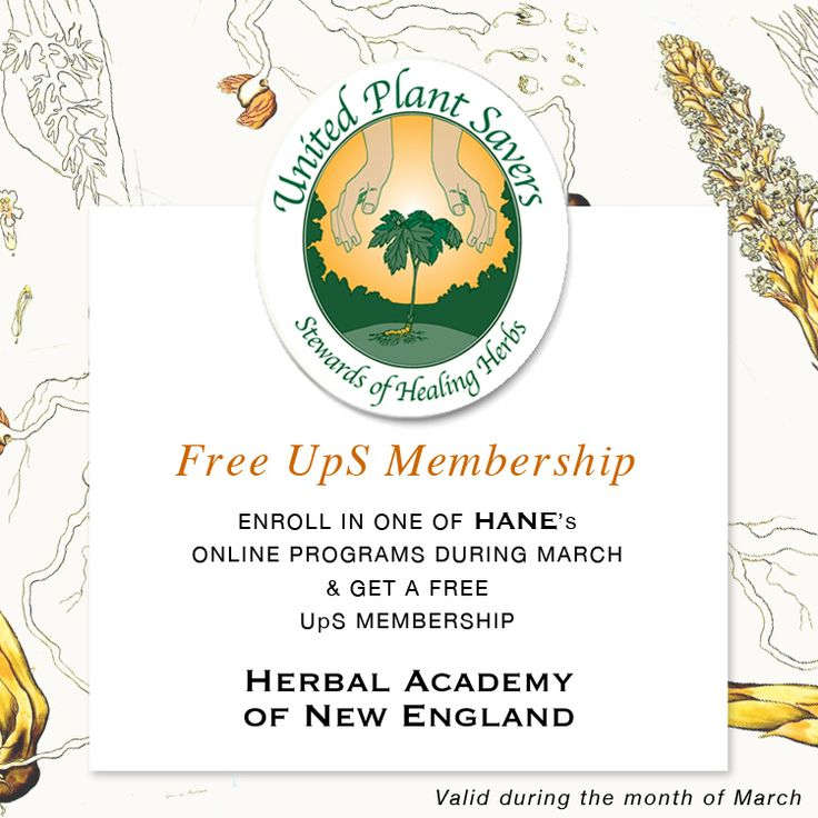herbal academy coupon code