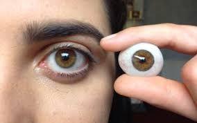 Resultado de imagem para  ocular prosthesis