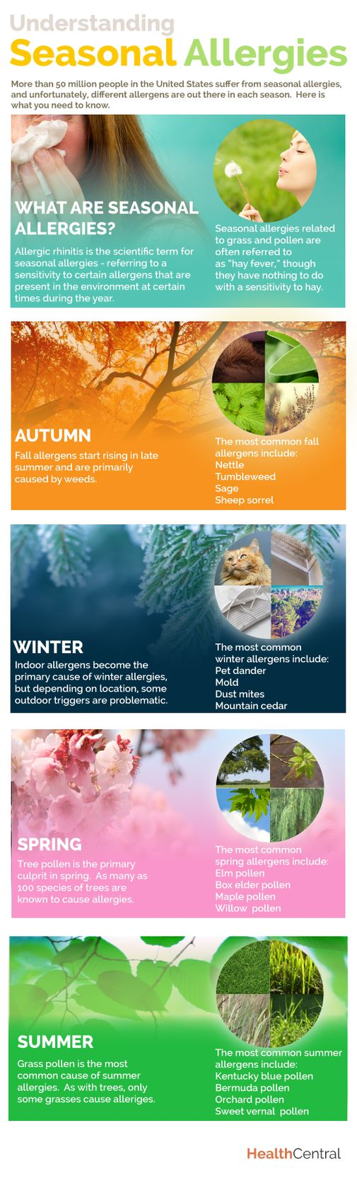 (Infographic) Understanding Seasonal Allergies #allergy
