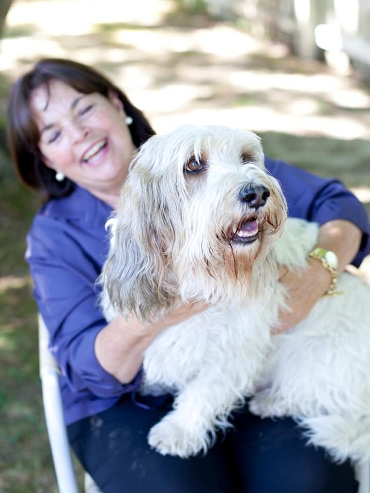 ina with her friend joanne newbolds adorable dog baxter is a old petit basset griffon venden pbgb for short - Barefoot Contessa Friends