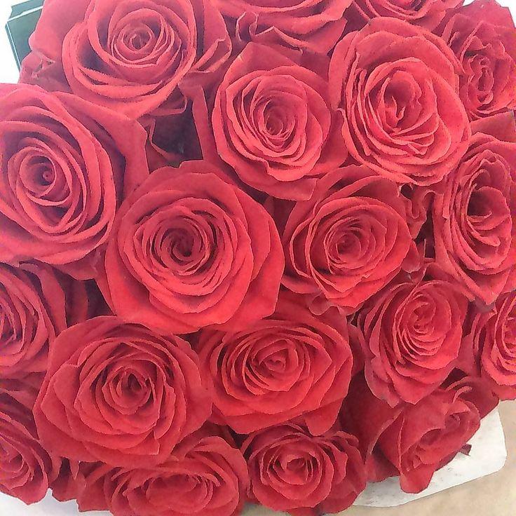Смысл жизни — в мелочах: Ужин вместе при свечах, Роза в домена рассвете, Радость, как смеются дети. ���������� . . . . . #roses #rose #redrose #redroses #bouquet #flowers #iloveroses #goodmorning #springday #spring #fav_flowers #flowerstagram #flowersofinstagram #flowerslovers #instaflower #instaflowers #floweroftheday #beautyflowers #happy #instagramflowers #instaflowers #instaflower #morning #розы #цветы #букет #весна #доброеутро #ялюблюрозы #розакрасная #нежныйцветок…