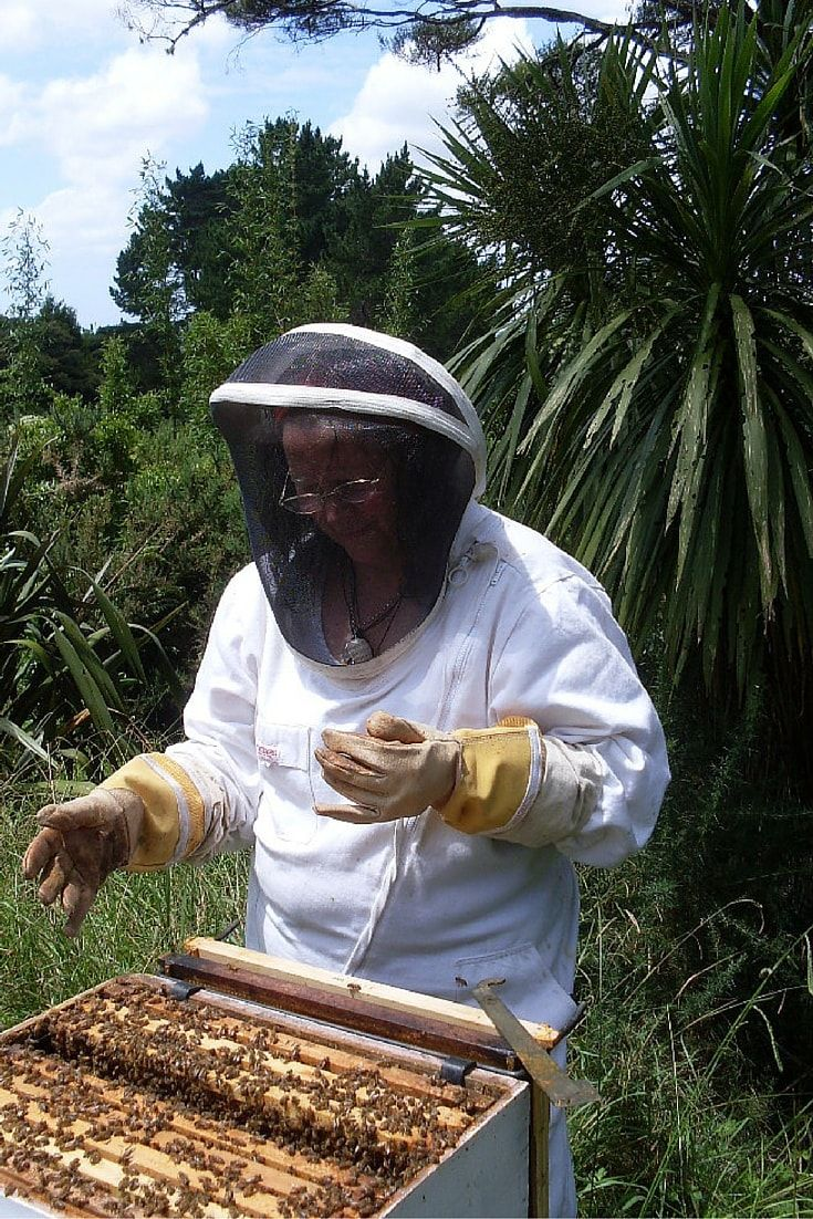 Epsom decking over a raised eyesore ashwell landscapes - Beekeeping 101 Seven Steps To Becoming A Beekeeper