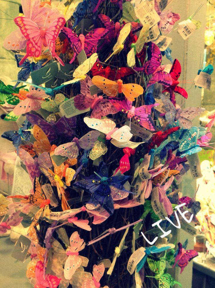 Farfalle.