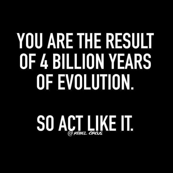 Rebel circus quotes #funny #sarcastic                              …