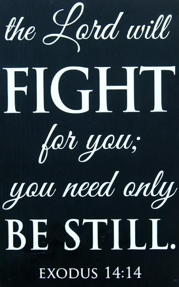 """The Lord will fight for you; you need only be still."" #Exodus 14:14 #biblical #quote #Amen"