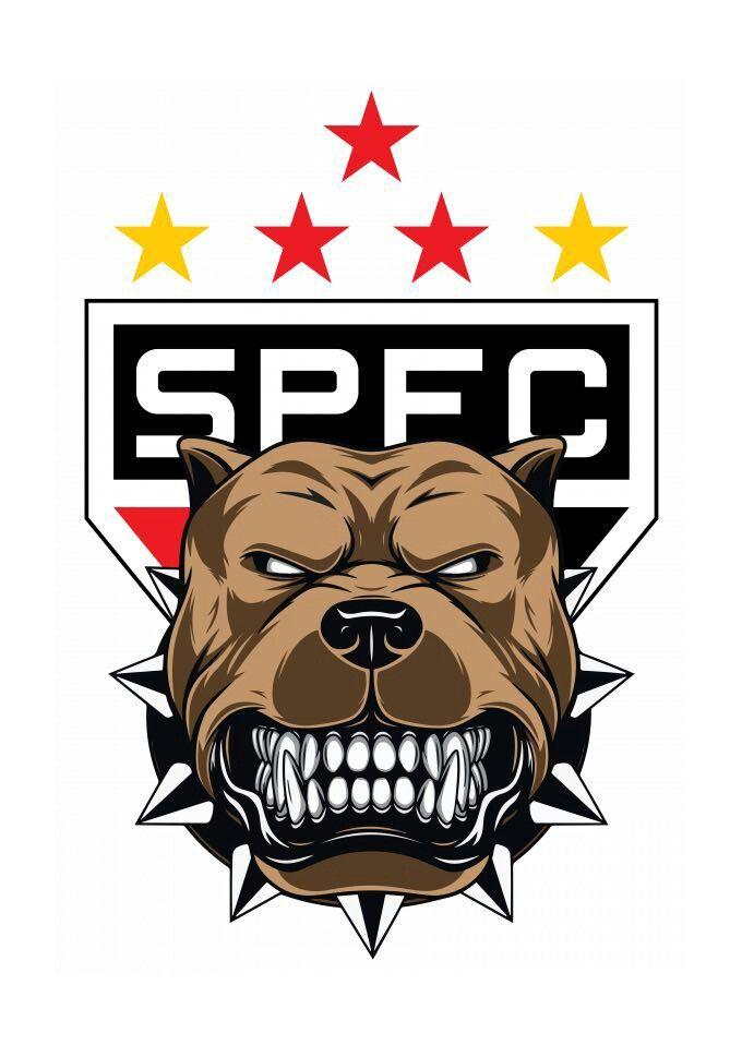 29df1275cf Pin de Nalini Santos em SÃO PAULO MEU AMOR | São paulo futebol clube, São  paulo futebol e Futebol sao paulo