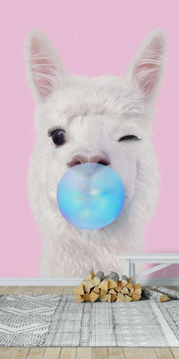 Llama Bubbelgum Wallpaper#bubbelgum #llama #wallpaper in ...