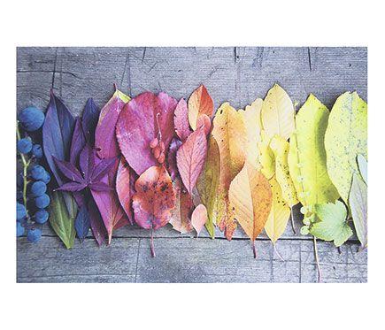 Canva 45 x 65 cm hojas leroy merlin cuadros for Enmarcar cuadros leroy merlin