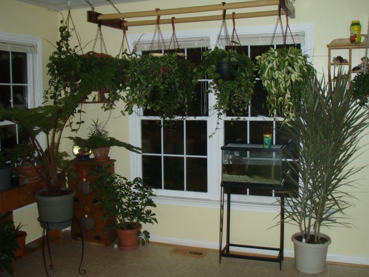 Hanging Bakers Rack For Plants Bril Indoorsy Aka