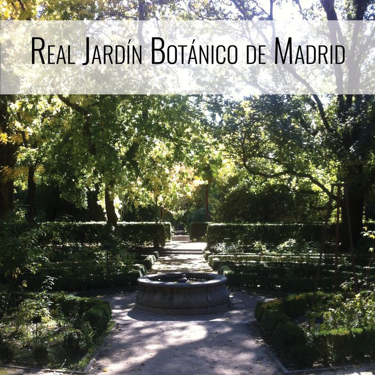 Exploring the Real Jardín Botánico de Madrid, Madrid, Spain