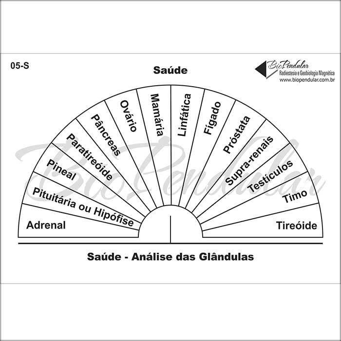 Gráficos 05-S