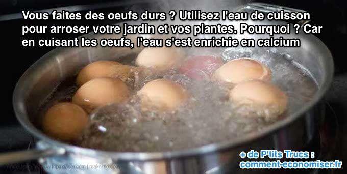 Que faire avec l'eau de cuisson des oeufs ? Arrosez vos plantes !