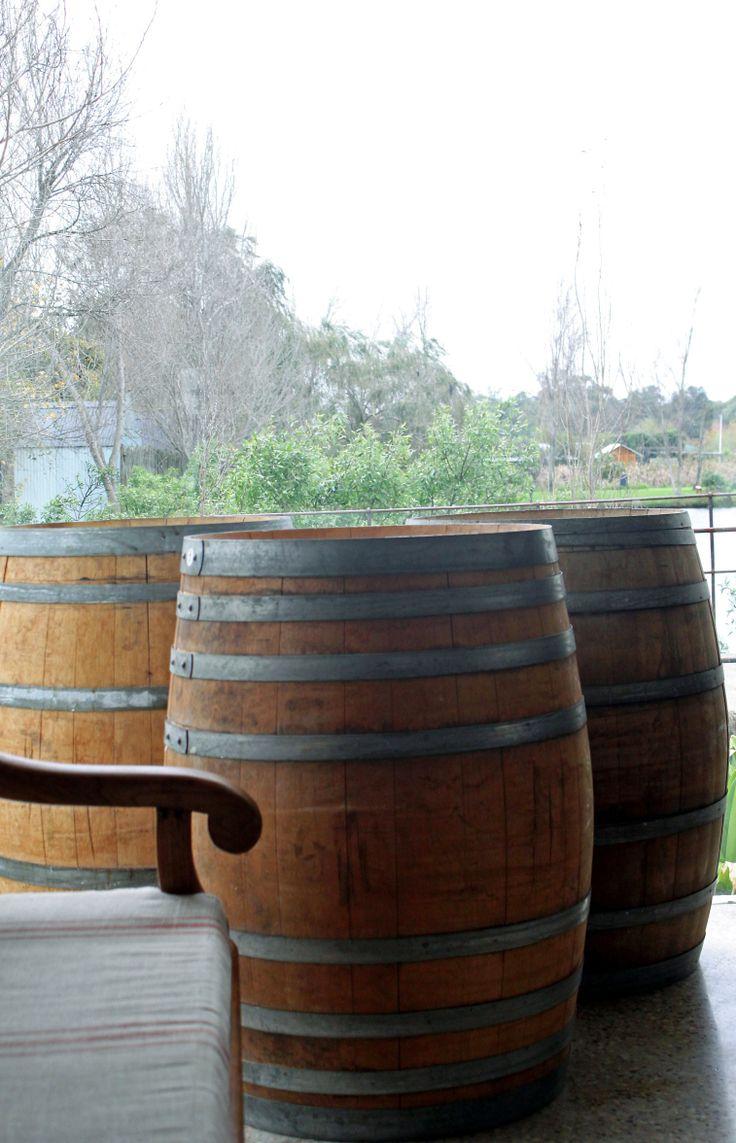 Spier Wine Farm, Stellenbosch,June 2014