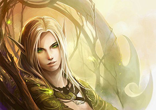 Light elves are also called high elves, sun elves, day elves, and gold elves. They have power over life and light. They can heal with a touch and generate light. Light elves are known to be rather narcissistic and view themselves as higher than the other elven races. Their magic is the strongest of the elven people.