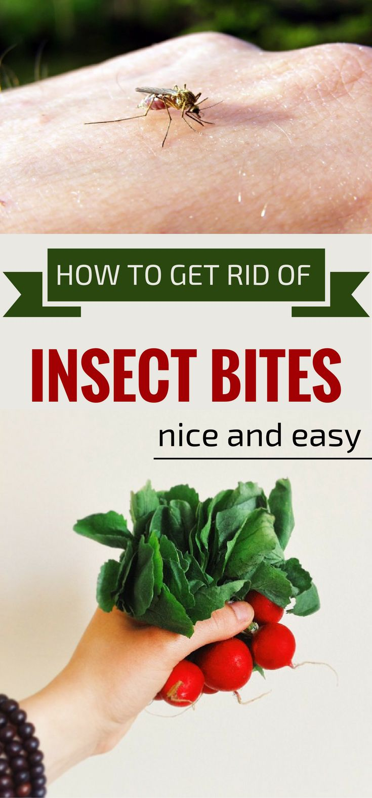 how to get rid of infected insect bites
