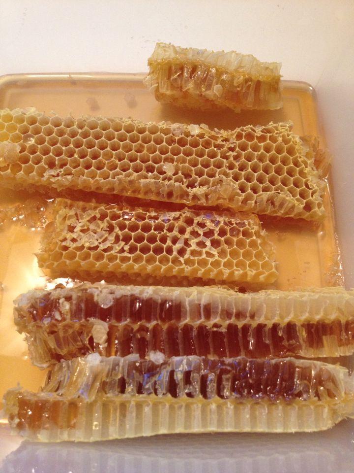 Greek natural bee wax full of Greek Flower honey - BeeGreek.gr