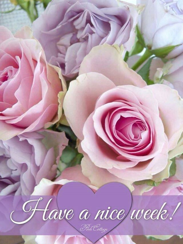 Image result for Happy new week with roses