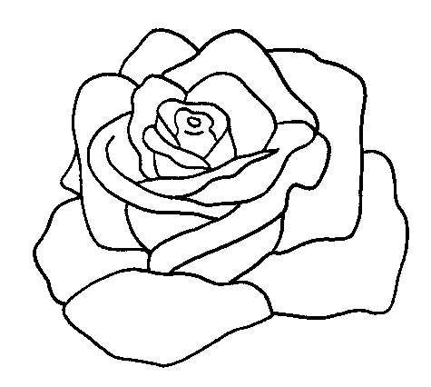 Disegni Di Rose Da Stampare Disegni Di Rose Disegni Disegni Da
